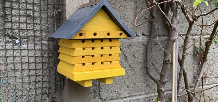 A picture of a bug-house mounted to a garden fence post